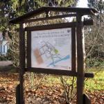 Park przydworsdki - Narwiański PN