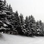 Karpacz - Zima