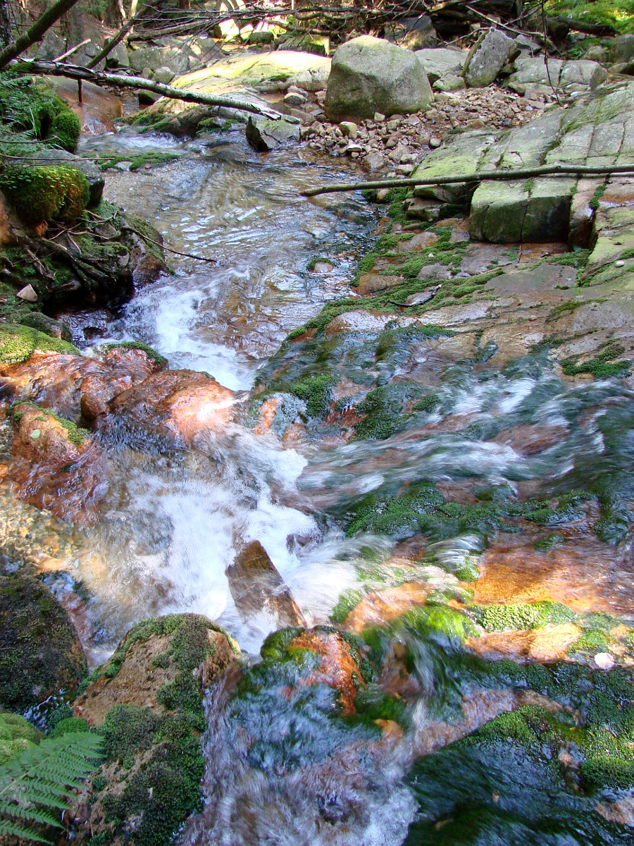 Okolice Karpacza - leśny potok